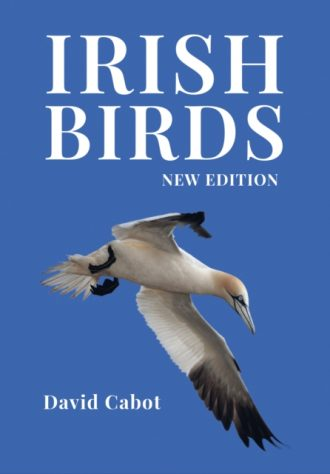 cabot irish birds