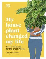 damoney my house plant changed my life