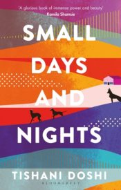 doshi small days and nights