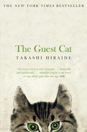 hiraide guest cat