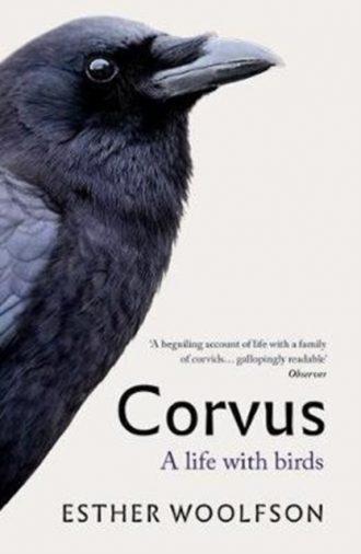 woolfson corvus