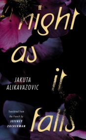 alikavazovic night as it falls