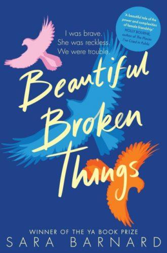 barnard beautiful broken things