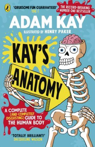 kay kays anatomy