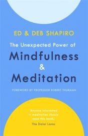 shapiro mindfulness and meditation
