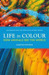 stevens life in colour