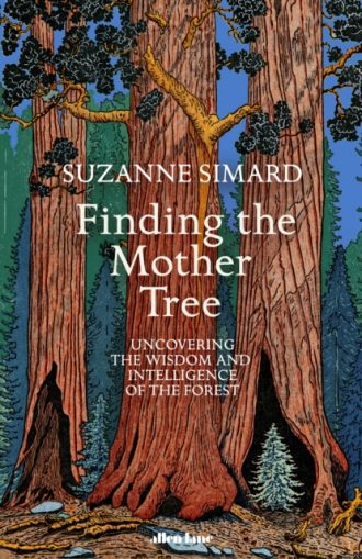 simard finding the mother tree